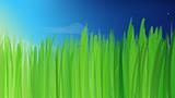 Комикс Высокая трава на портале Авторский Комикс